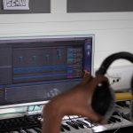 Ableton, iMac, Headphones, student, elev, musikk produksjon, music production.