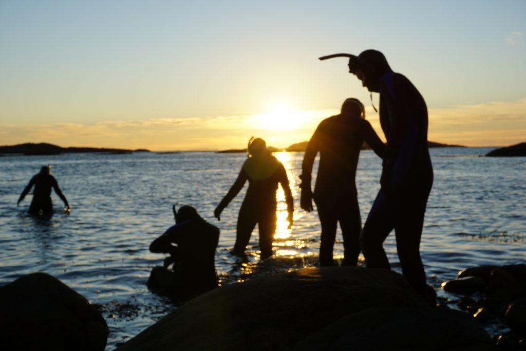 Elever fra Friluftsliv Lett dykker på Helgelandskysten